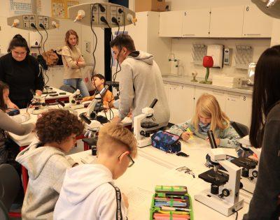 Gesamtschule Wanne-Eickel GS-Tag 25