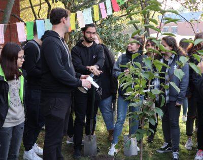 Gesamtschule Wanne-Eickel SV Klimabaum